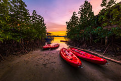 Red sea kayaks in the evening Stock Images