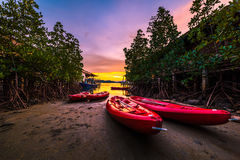 Red sea kayaks in the evening Stock Photography