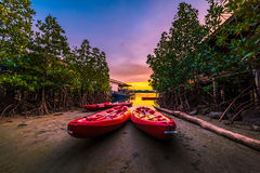 Red sea kayaks in the evening Stock Image