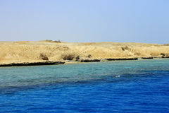 Red sea seashore on Ras Mohamed territory Royalty Free Stock Images