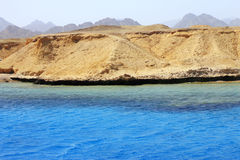 Red sea seashore on Ras Mohamed territory Royalty Free Stock Photography