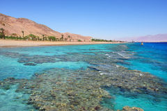 Red Sea shoreline. Eilat, Israel. Royalty Free Stock Photos