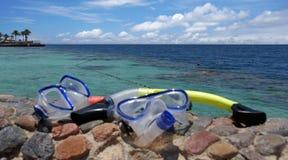 Red sea snorkeling Royalty Free Stock Photos