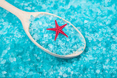 Red sea star with sea salt Stock Photography