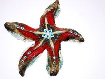 Red Sea star on the white wall Royalty Free Stock Photo