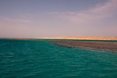 Red sea in Hurghada in Egypt Stock Photography