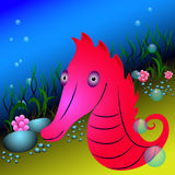 Red seahorse and seaweeds under water Stock Photography