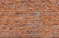 Red seamless (only horizontal) bricks Royalty Free Stock Photography