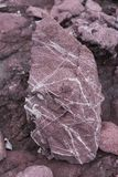 Red sedimentary Rock with white crystal on surface Stock Photography