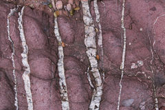 Red sedimentary Rock with white crystal on surface Stock Image