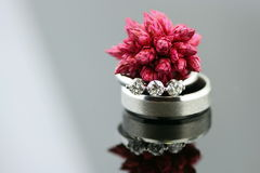 Red seed pod on wedding rings Stock Photo