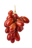 Red seedless table grapes Royalty Free Stock Photo
