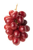 Red seedless table grapes Royalty Free Stock Images