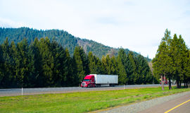 Red semi truck trailer nice rig cargo on green natural road Royalty Free Stock Images