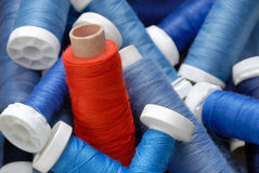 Red sewing cotton standing out from the crowd. Concept shot with a heap of blue bobbins and a red one standing out royalty free stock images