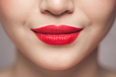 Red Sexy Lips closeup. Make up concept. Beautiful Perfect Lips. Royalty Free Stock Image