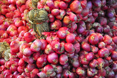 Red Shallots from organic farm. Red Shallots pattern background Stock Photo