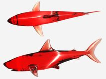 Red sharks Stock Photo