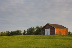 Red shed on hill. Old red shed on hill of green grass tress in background Stock Images