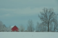 Red shed in snow Royalty Free Stock Images
