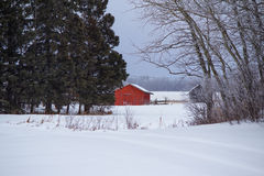 Red shed in a white landscape. Red wood shed in a winter landscape Stock Photo