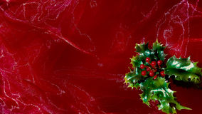 Red sheer material with holly Royalty Free Stock Image