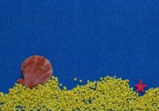 Summer composition with shells on blue glitter background stock image