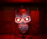 Red shining skull Stock Photo