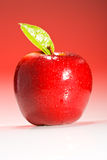 Red Shinny Apple with water drops Royalty Free Stock Images