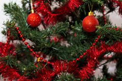 Red baubles on a Christmas tree. Red and shinny baubles on a Christmas tree with beautiful green branches. Merry Christmas Stock Photos