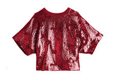 Red shiny blouse Stock Photography