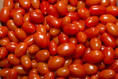 Red, shiny delicious cherry tomatoes Royalty Free Stock Images