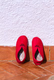 Red shoe Royalty Free Stock Images