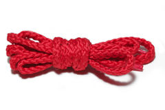 Red shoelace Stock Image