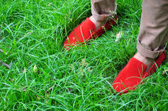 Red shoes. The red shoes contrast with the green grass Stock Photo