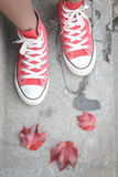 Red shoes with autumn leaves Royalty Free Stock Photo