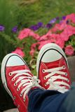 Red shoes with a background of flowers. Stock Photography