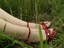 Red shoes and beauty legs. Beauty legs and red shoes in green grass Stock Photography