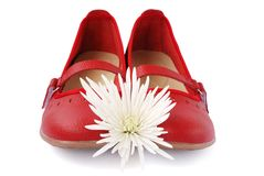 Red shoes with chrysanthemum royalty free stock photo