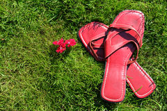 Red shoes on grass. Lady's red slip-on sandals on green grass giving the feeling of barefoot and relaxation in summertime Stock Image