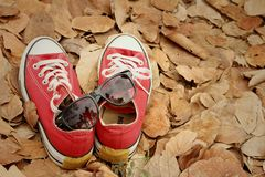 Red shoes with sunglasses on brown leaves background. Royalty Free Stock Photos