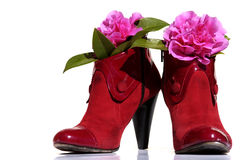 Red shoes whit flowers. Red shoes of a woman model back whit flowers on a white background,clothing,feet footwear royalty free stock image