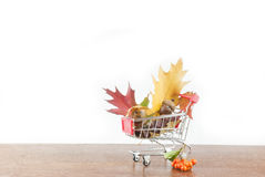A red shopping cart full of fall Royalty Free Stock Image
