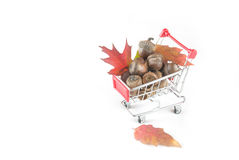 A red shopping cart full of fall Royalty Free Stock Photography
