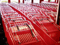 Red Shopping Carts. Rows of red supermarket shopping carts in line at front door Royalty Free Stock Images