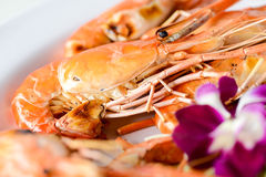 Red shrimp grilled. On a plate Royalty Free Stock Photos