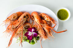 Red shrimp grilled. On a plate Stock Image