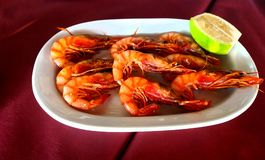 Red shrimps. Royalty Free Stock Photography