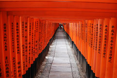 Red shrine gates Stock Image