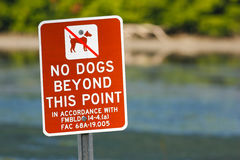 Red sign No dogs beyond this point. Beach near sea water, Florida, USA. Warning sign in the beach. Birdwatching in Florida. Dog in. Florida royalty free stock photos